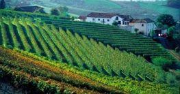 Piemont – immer wieder ein guter Tipp
